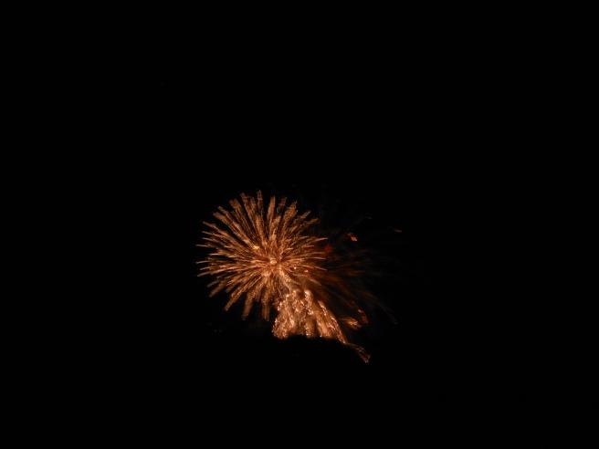2014-7-5-Allison (Fireworks) 037
