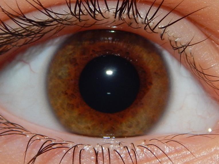 2014-9-1-Allison(Eyes) 018