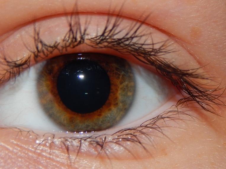 2014-9-1-Allison(Eyes) 029