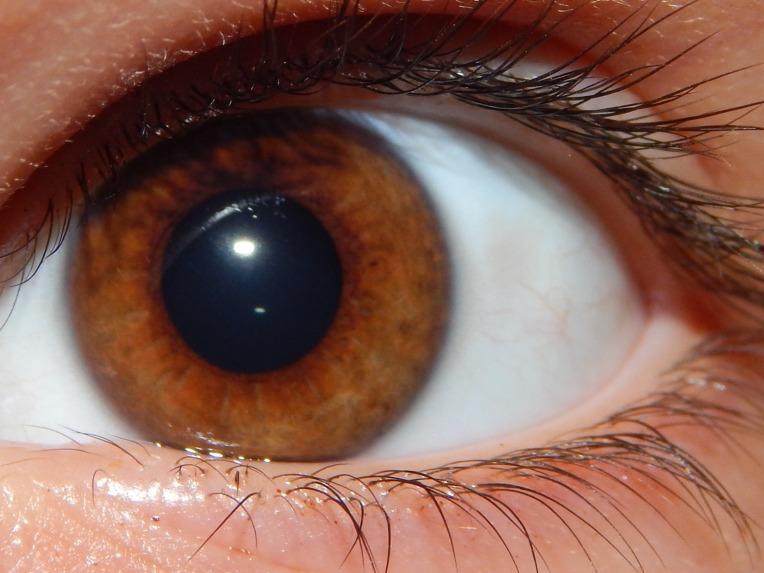 2014-9-1-Allison(Eyes) 032