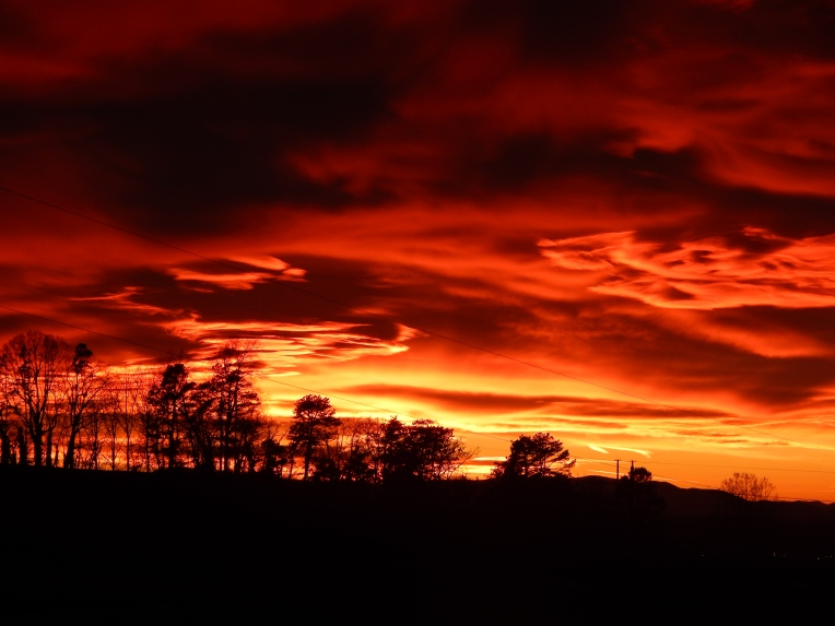 -Allison(sunset) 005
