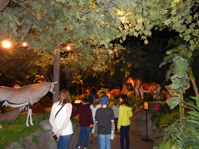 -Allison (Creation Museum) 031