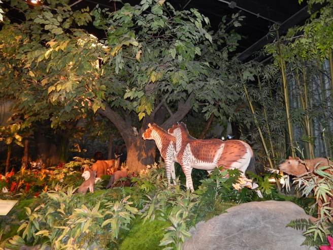 -Allison (Creation Museum) 033