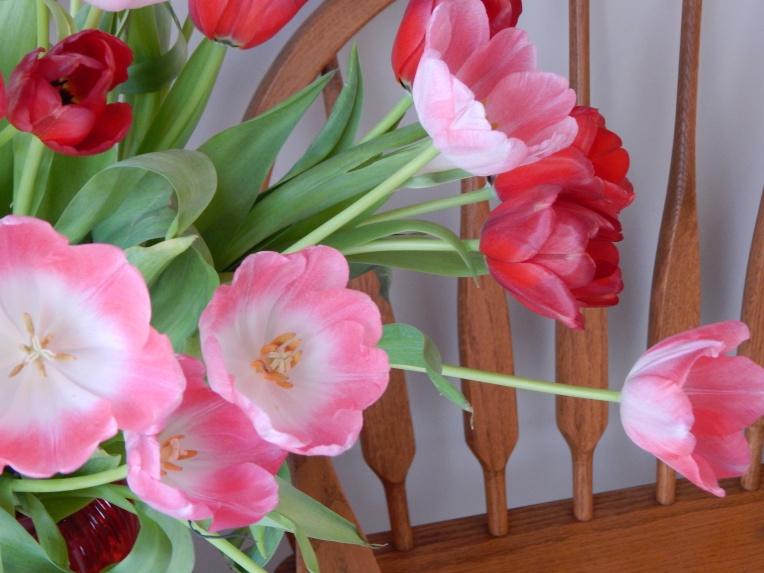 -Allison (headscarves, tulips) 023