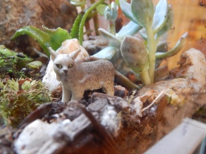-Allison (bunnies, forest terrarium) 014