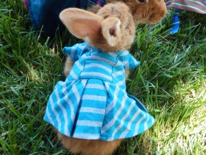-Allison (bunnies dressed up) 007