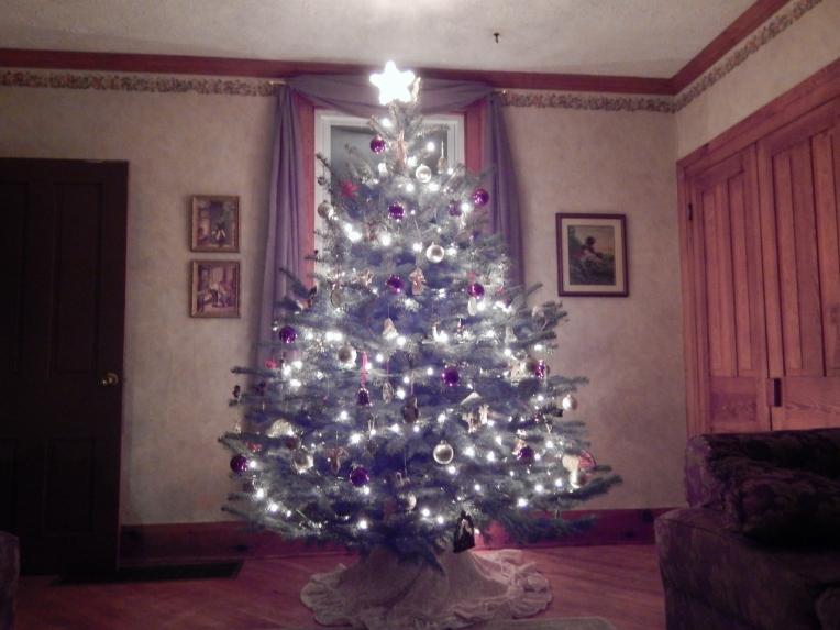 -Allison(Christmas tree and bunnies) 044 (1280x960)