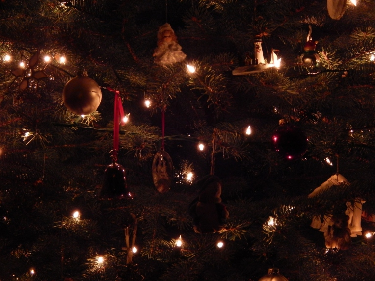 -Allison(Christmas tree and bunnies) 045 (1280x960)