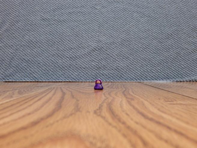 -Allison(gnome photostory) 015 (1280x960).jpg
