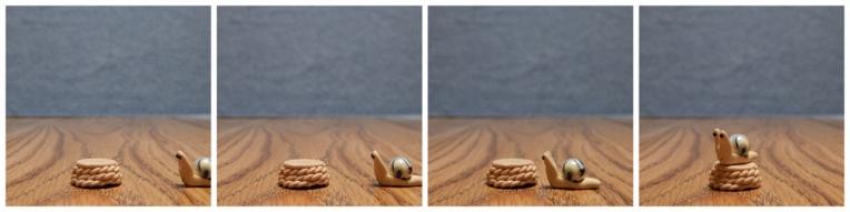 snail Bob (1280x320).jpg