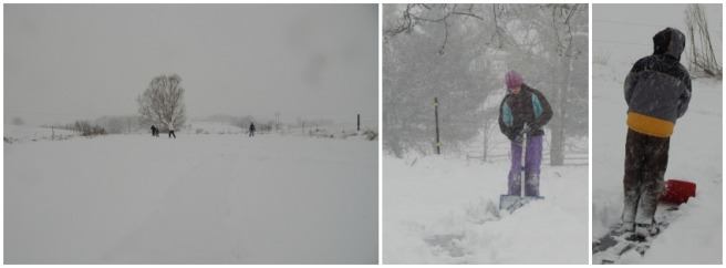 snow 10 (851x315)