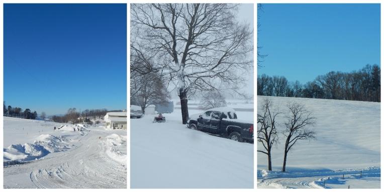 snow 3 (1280x640)