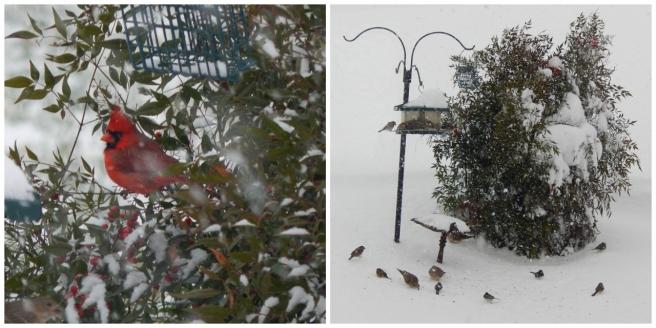 snow 7 (1280x640)