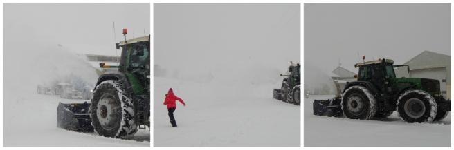 snow 9 (1280x427)