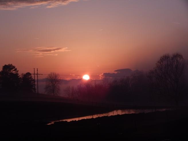 fog sunset (18) (1280x960)
