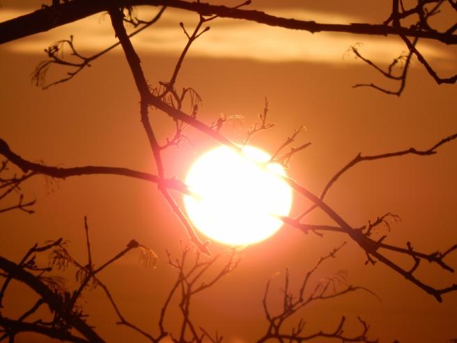 fog sunset (6) (1280x960)
