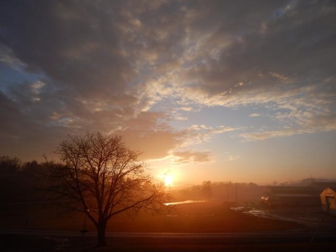 fog sunset (7) (1280x960)