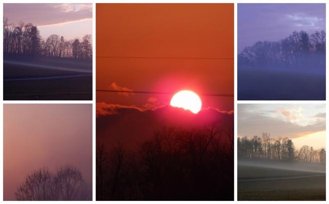 sun collage 2 (1280x794)
