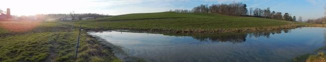 -Allison(pond, geese) 011 (1280x245)