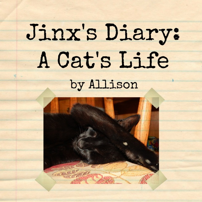 jinx's diary poster