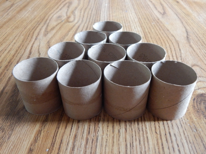 -Allison(cardboard roll shelf, Willow) 005 (1024x768)