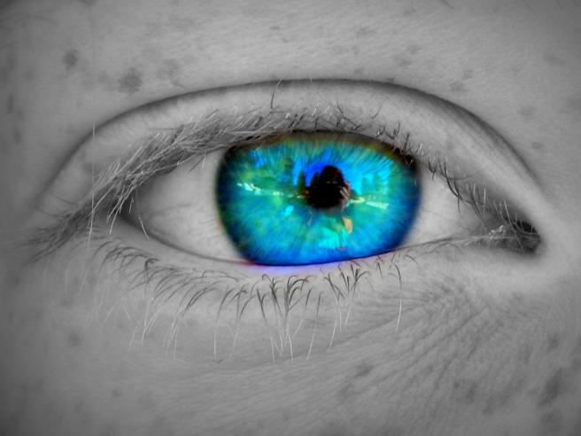 mallory's eye