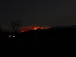 -Allison(arboretum, forest fire) 009 (1024x768)