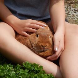 -Allison(birthday hike, bunnies) 190 (1280x960)
