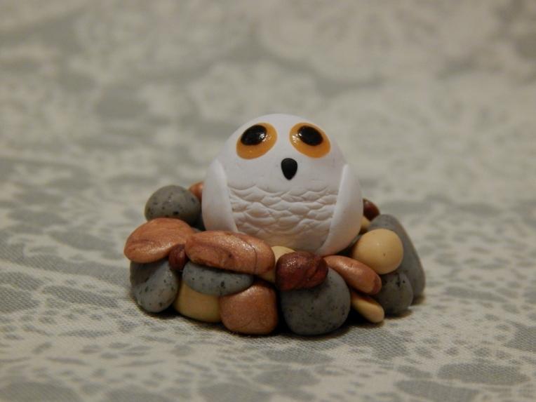 snowy owlet 1.1 (1024x768)