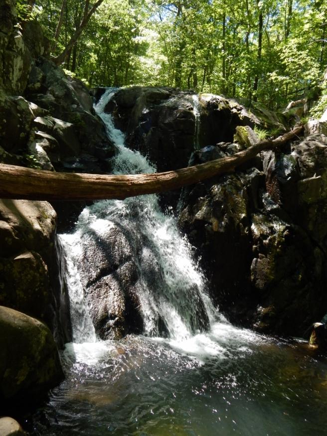 -Allison(hike) 103 (768x1024)