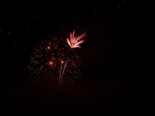 -Allison(fireworks) 017 (1280x960)