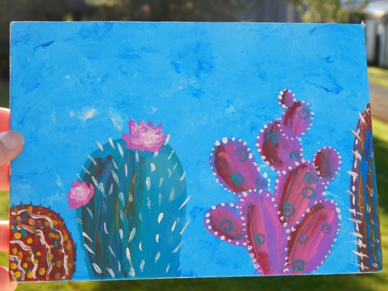 colorful cacti 4 (800x600)